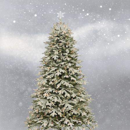 geels vijvertje - kerstmis