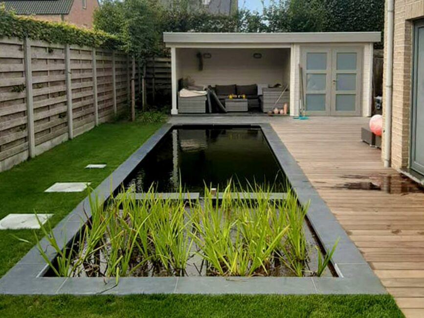 Zwemvijver kleine tuin Geels Vijvertje